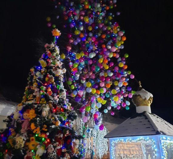 Рождественская великая вечерня и Литургия в Богородицком Житенном женском монастыре